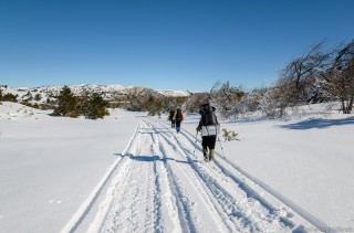 По дороге снегоходов